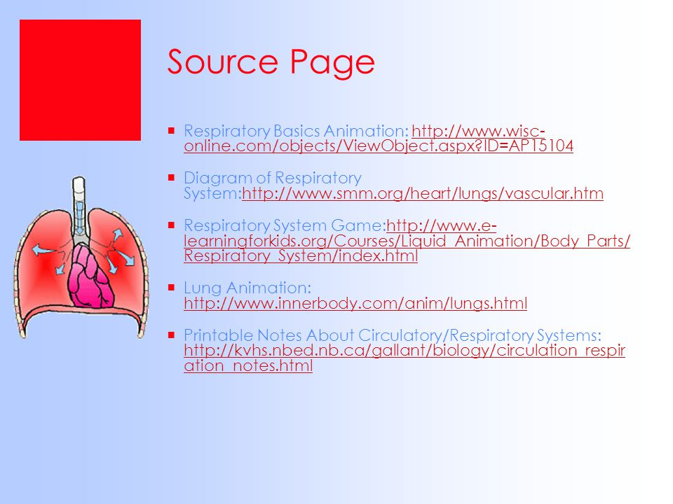 Source Page Respiratory Basics Animation: http://www.wisc- online.com/objects/ViewObject.aspx ID=AP15104.
