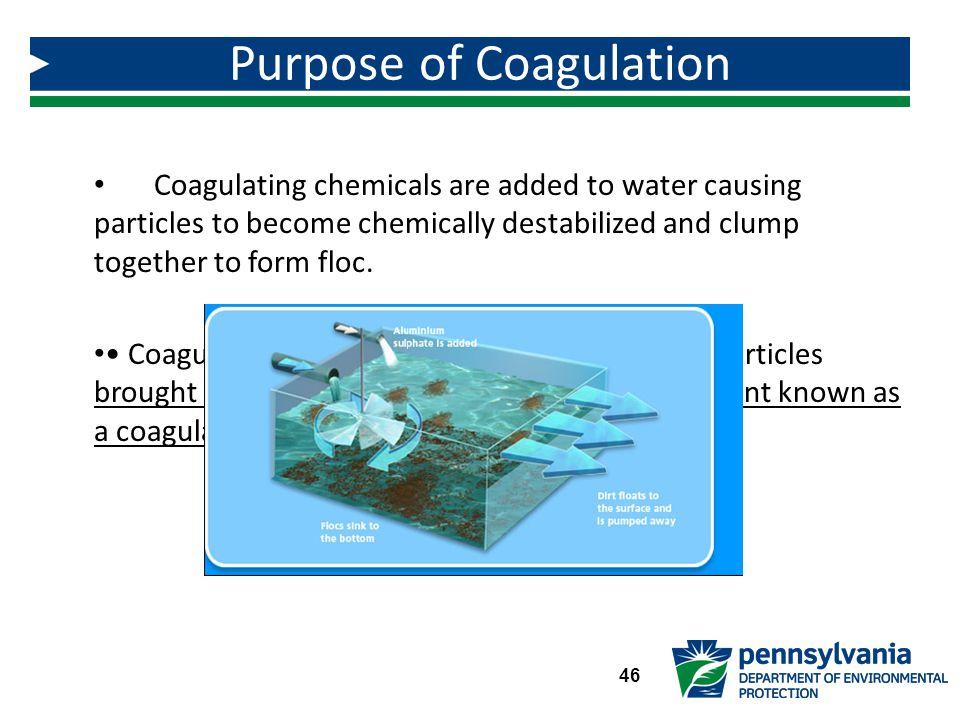 Purpose of Coagulation