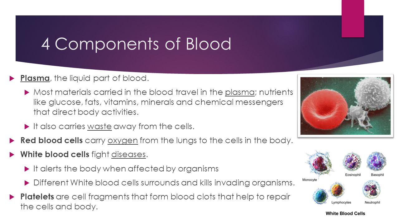 4 Components of Blood Plasma, the liquid part of blood.