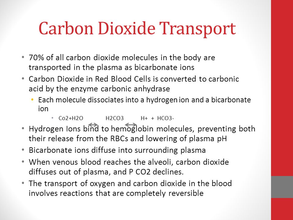 Carbon Dioxide Transport