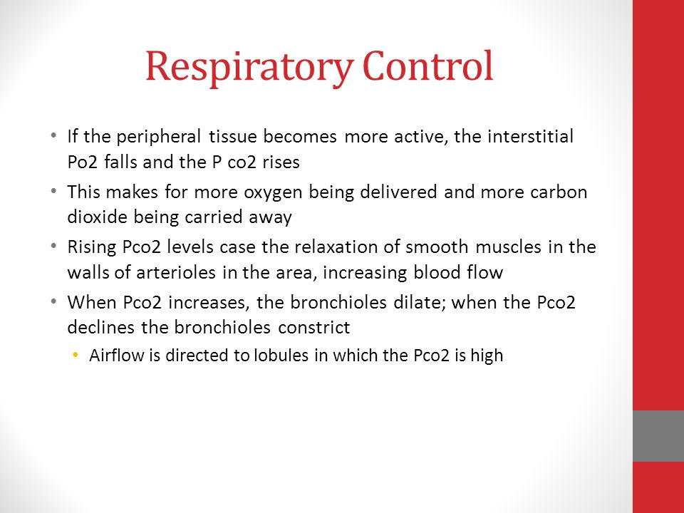 Respiratory Control If the peripheral tissue becomes more active, the interstitial Po2 falls and the P co2 rises.