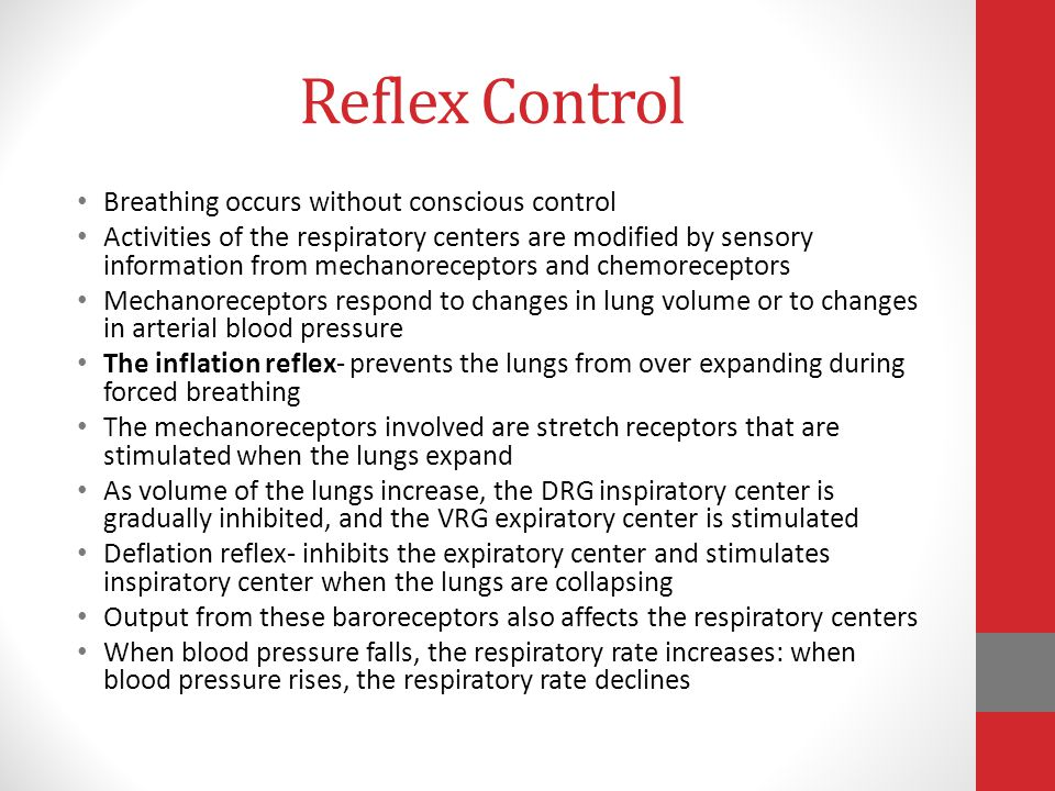 Reflex Control Breathing occurs without conscious control