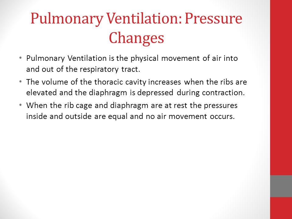 Pulmonary Ventilation: Pressure Changes