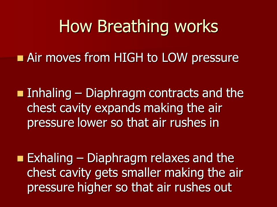 How Breathing works Air moves from HIGH to LOW pressure