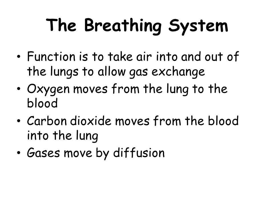 The Breathing System Function is to take air into and out of the lungs to allow gas exchange. Oxygen moves from the lung to the blood.