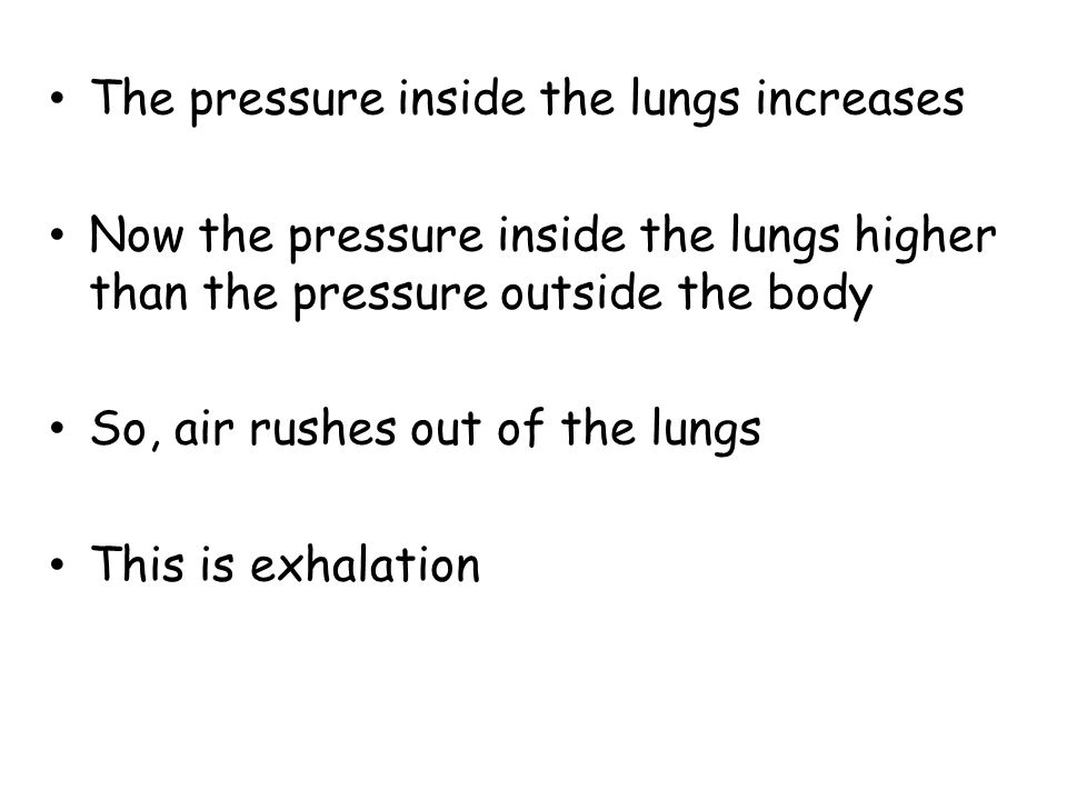 The pressure inside the lungs increases