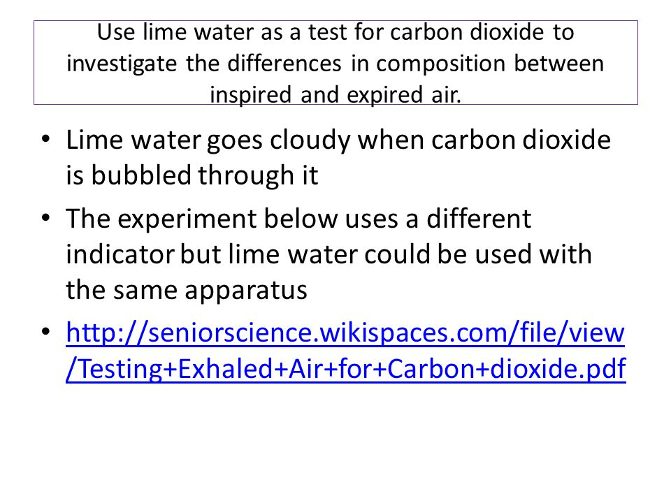Lime water goes cloudy when carbon dioxide is bubbled through it