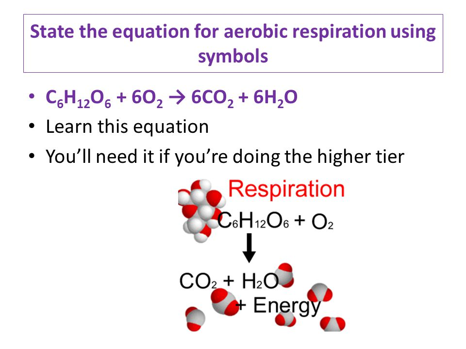 State the equation for aerobic respiration using symbols