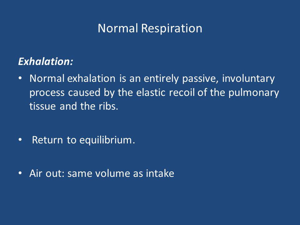 Normal Respiration Exhalation: