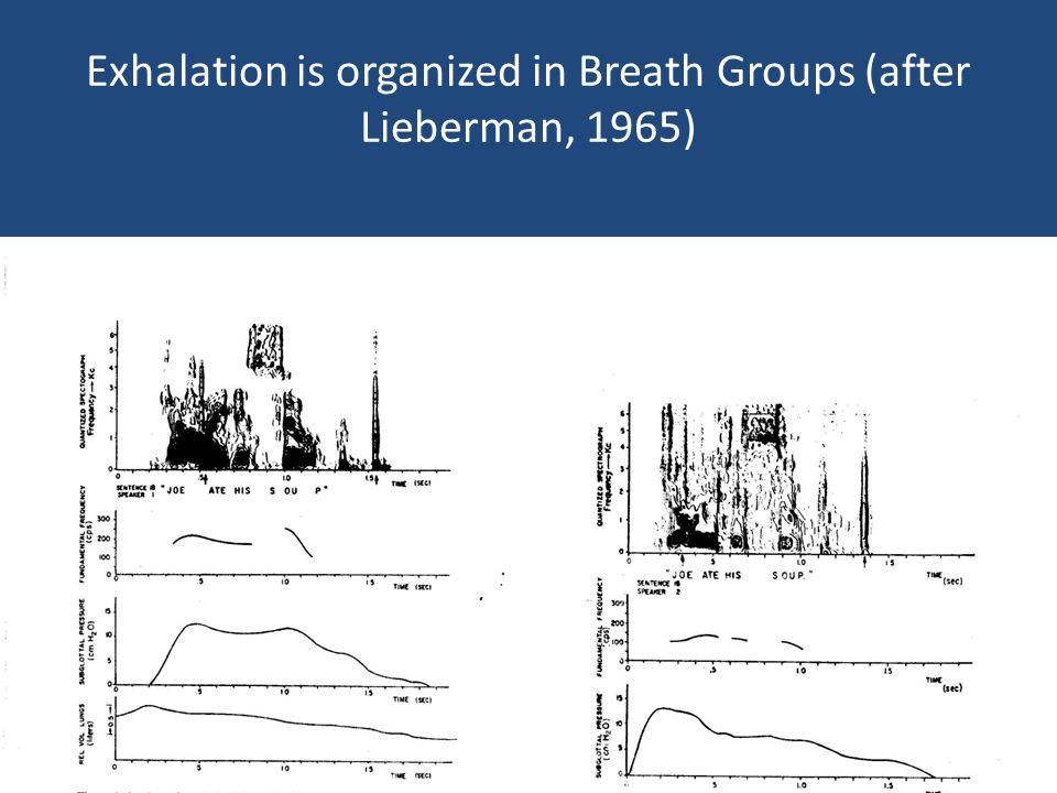Exhalation is organized in Breath Groups (after Lieberman, 1965)