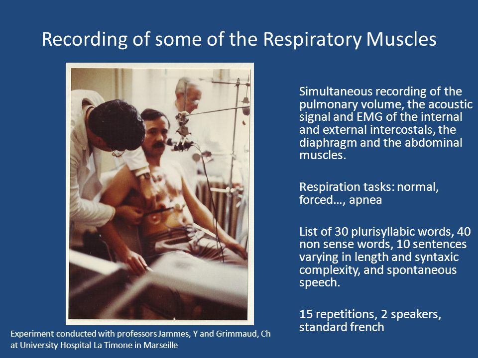 Recording of some of the Respiratory Muscles