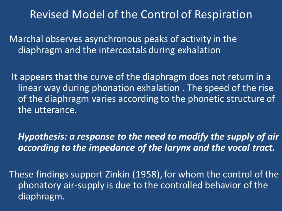 Revised Model of the Control of Respiration