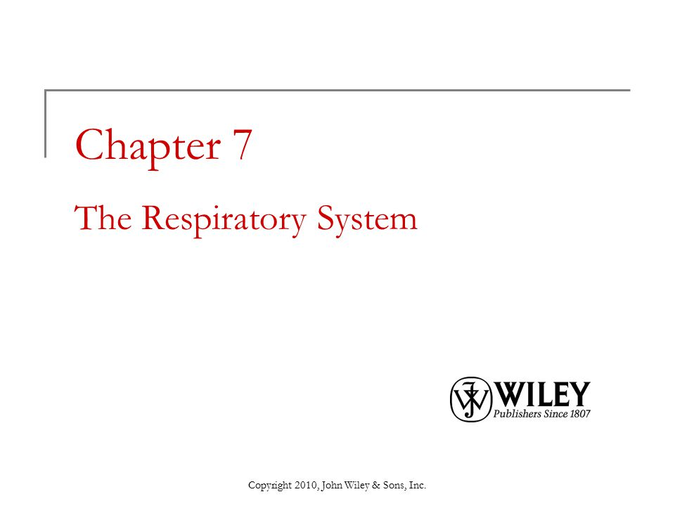 Chapter 7 The Respiratory System