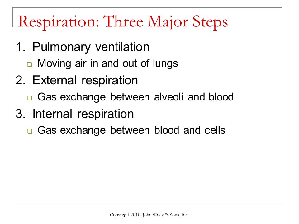 Respiration: Three Major Steps