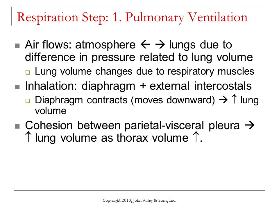 Respiration Step: 1. Pulmonary Ventilation
