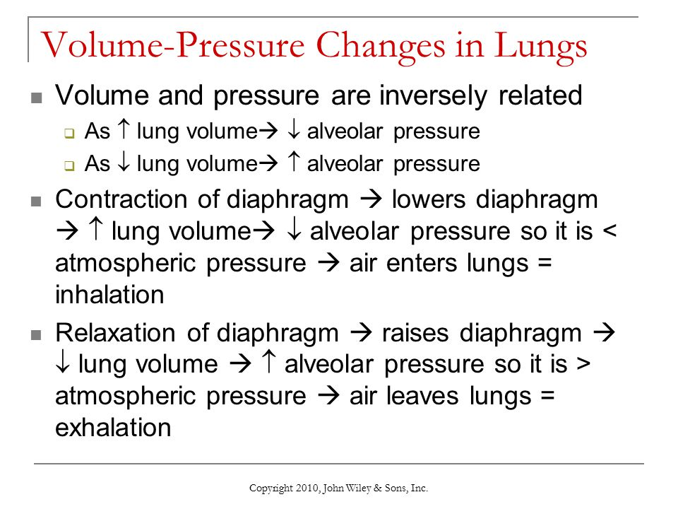 Volume-Pressure Changes in Lungs