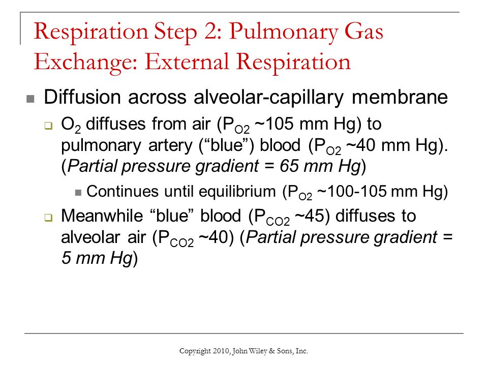 Respiration Step 2: Pulmonary Gas Exchange: External Respiration