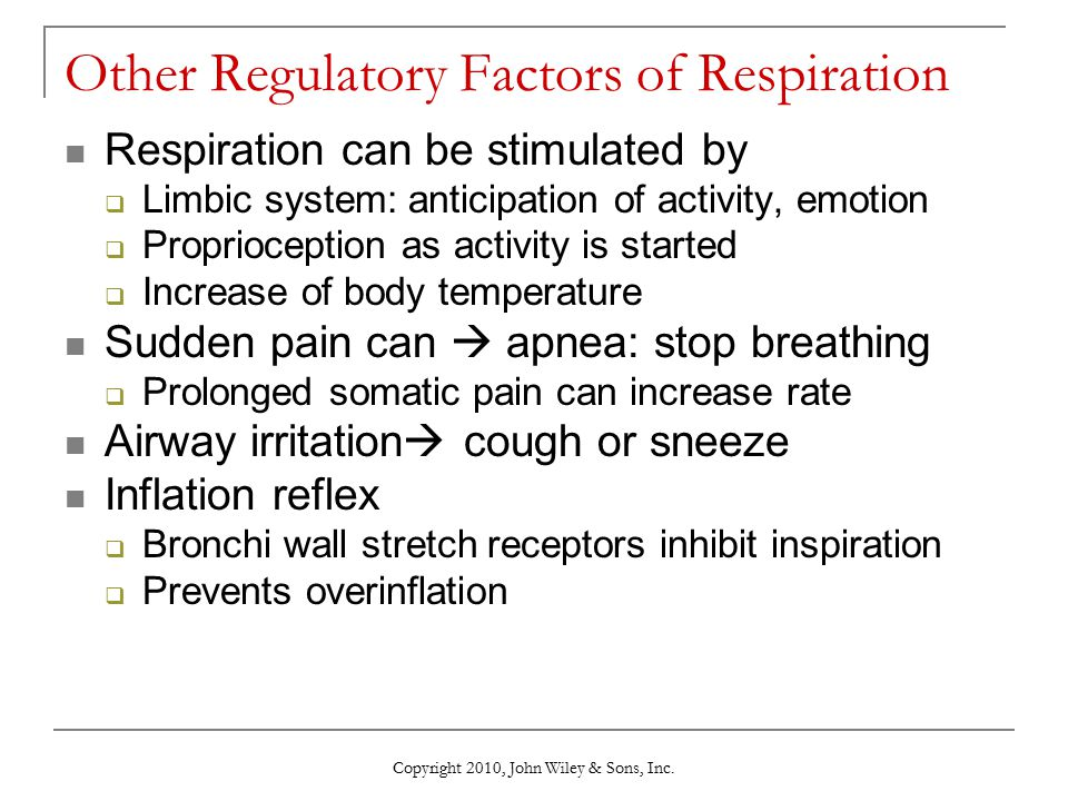 Other Regulatory Factors of Respiration