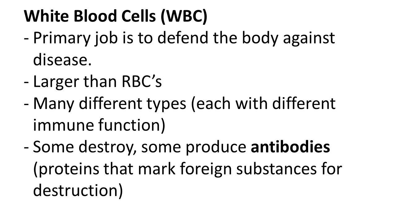 White Blood Cells (WBC)