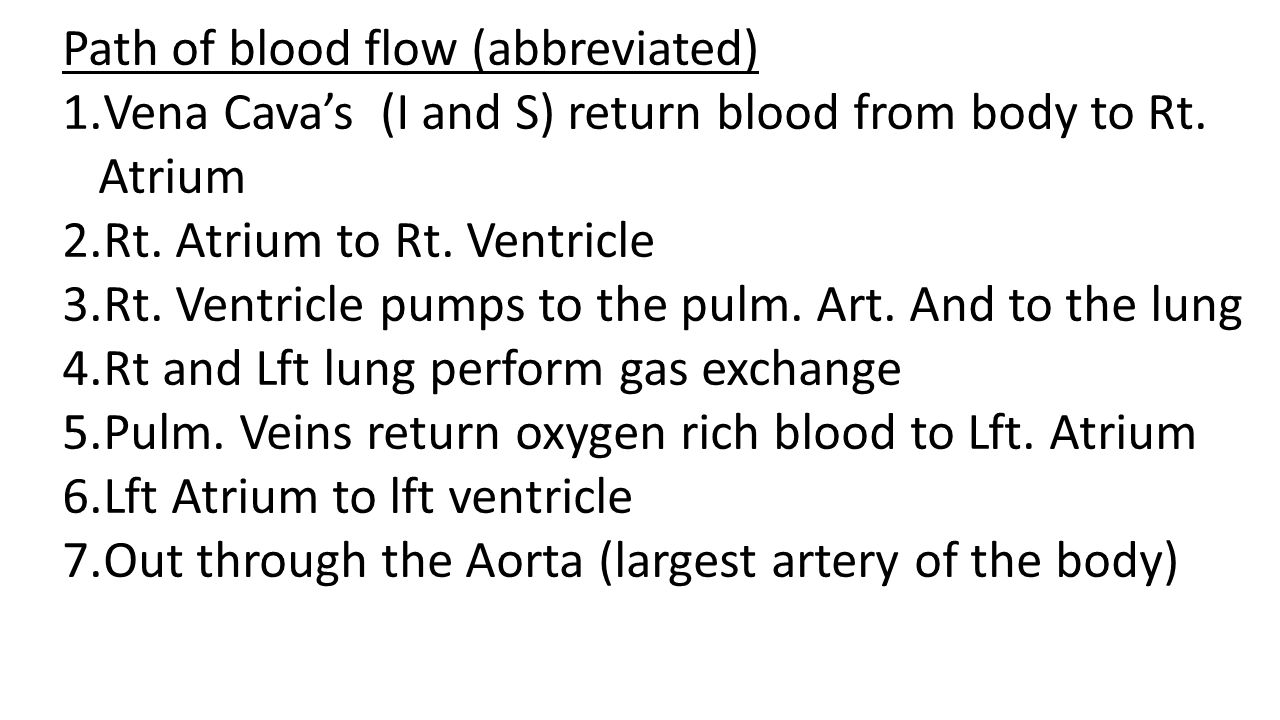 Path of blood flow (abbreviated)