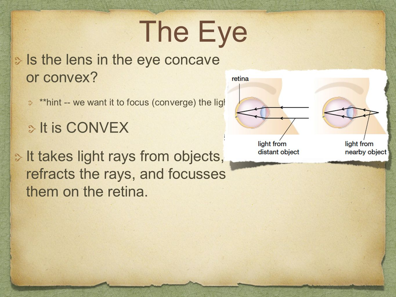 The Eye Is the lens in the eye concave or convex It is CONVEX