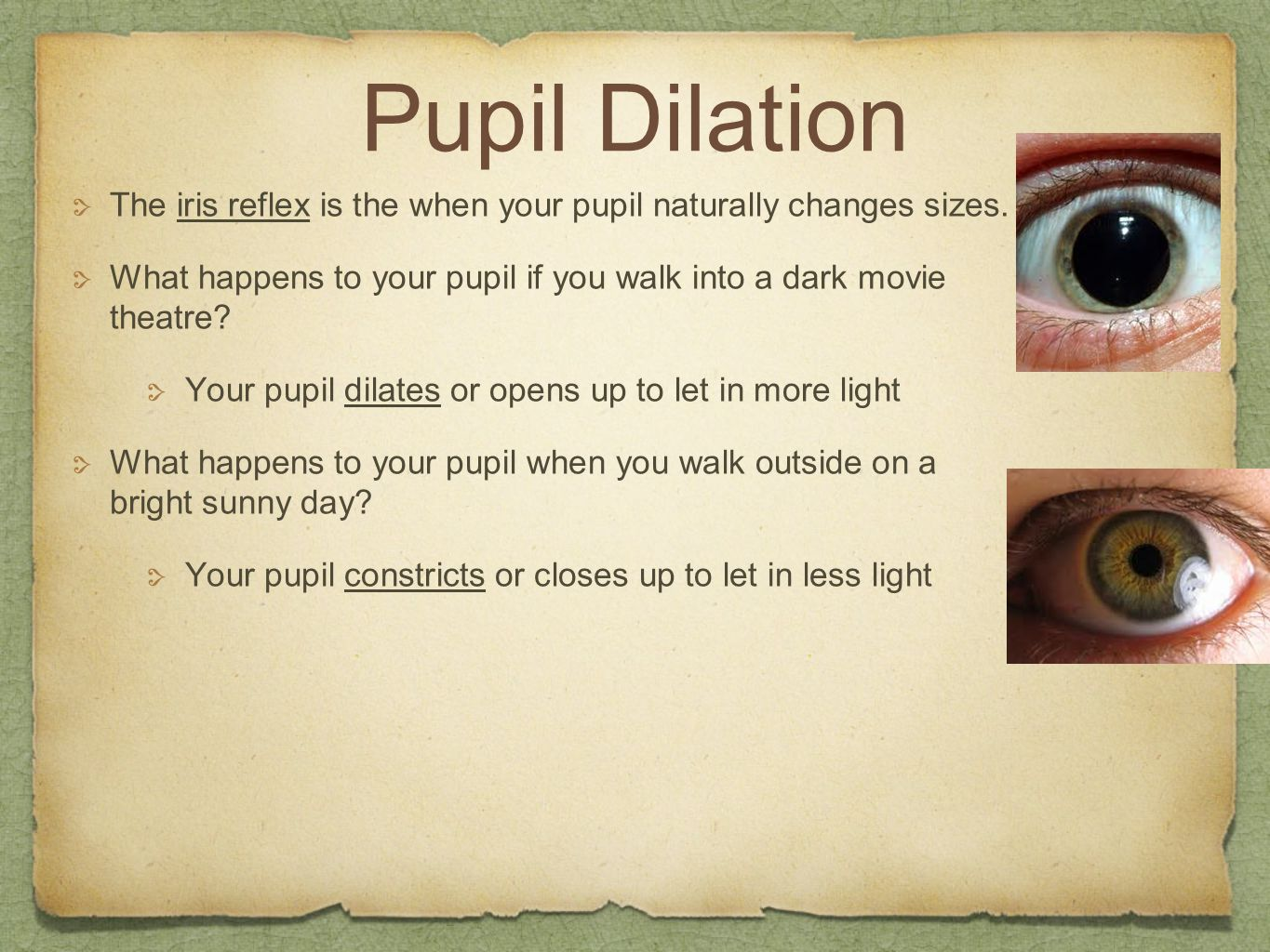 Pupil Dilation The iris reflex is the when your pupil naturally changes sizes. What happens to your pupil if you walk into a dark movie theatre