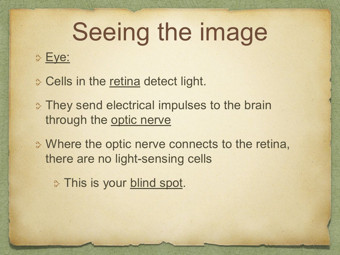 Seeing the image Eye: Cells in the retina detect light.