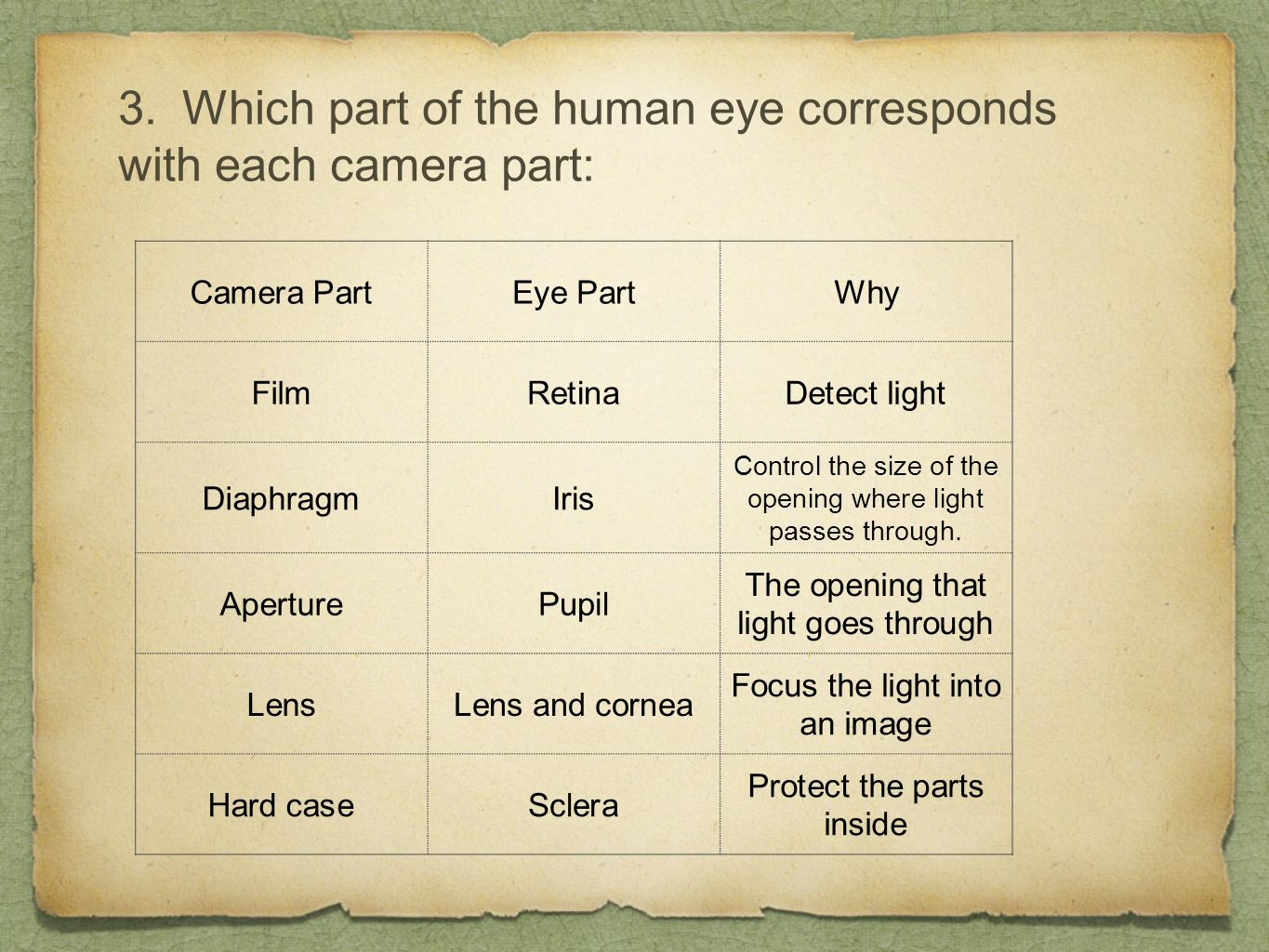 3. Which part of the human eye corresponds with each camera part: