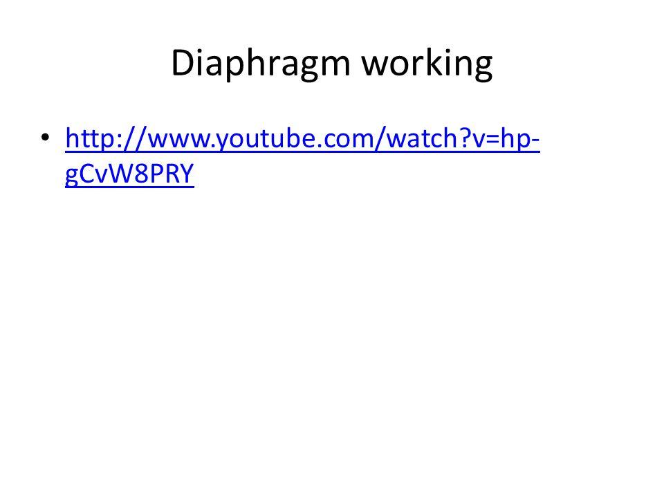 Diaphragm working http://www.youtube.com/watch v=hp-gCvW8PRY
