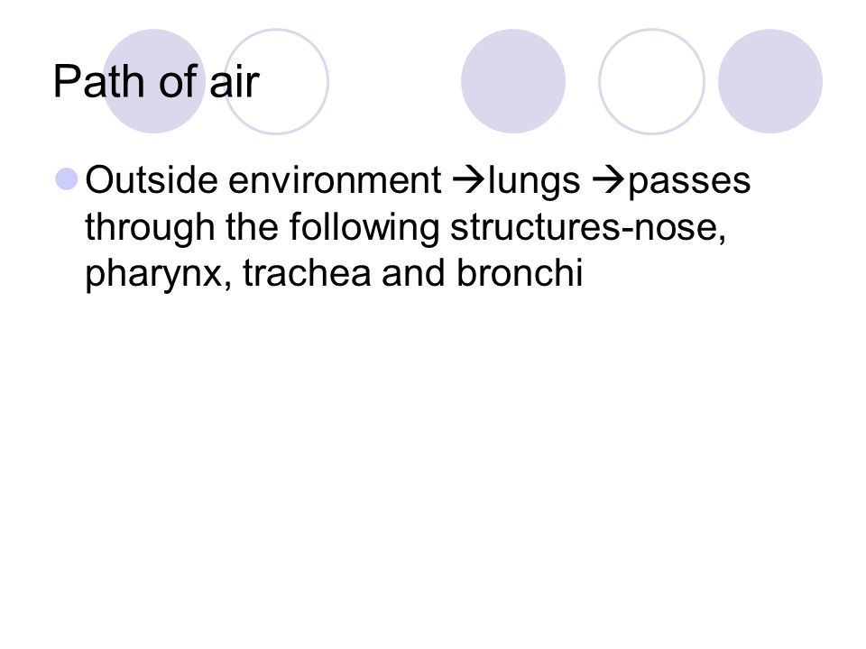 Path of air Outside environment lungs passes through the following structures-nose, pharynx, trachea and bronchi.