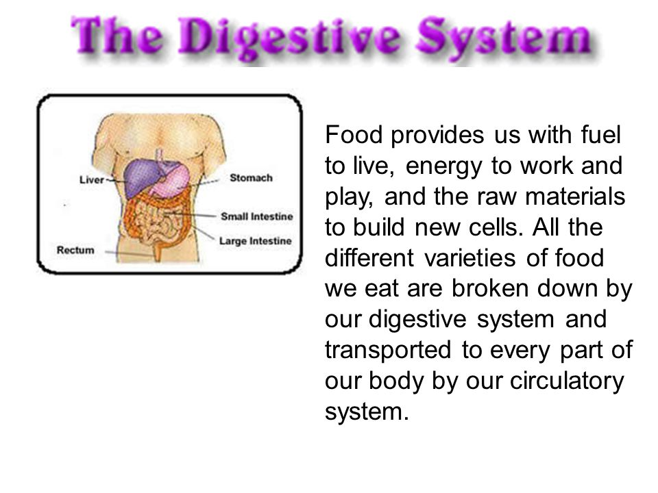 Food provides us with fuel to live, energy to work and play, and the raw materials to build new cells.