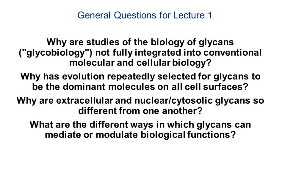 General Questions for Lecture 1