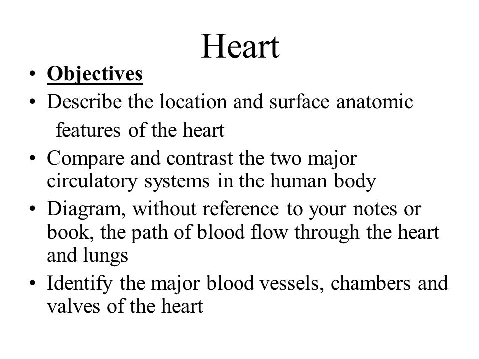 Heart Objectives Describe the location and surface anatomic