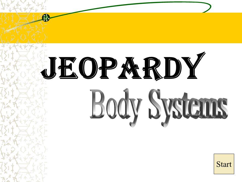 Jeopardy Body Systems Start