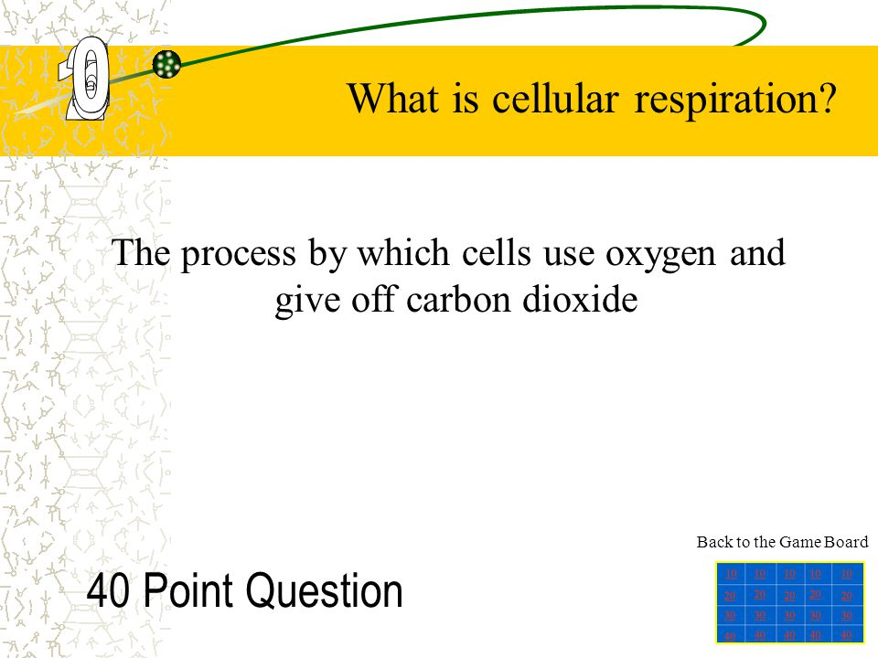 The process by which cells use oxygen and give off carbon dioxide