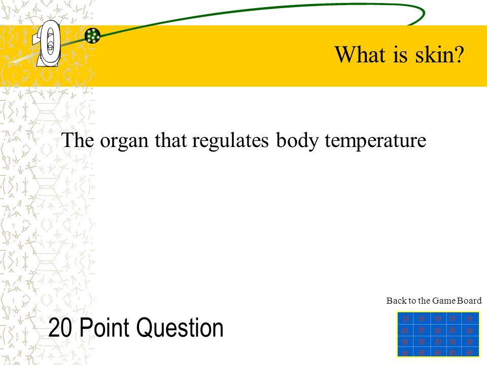 The organ that regulates body temperature