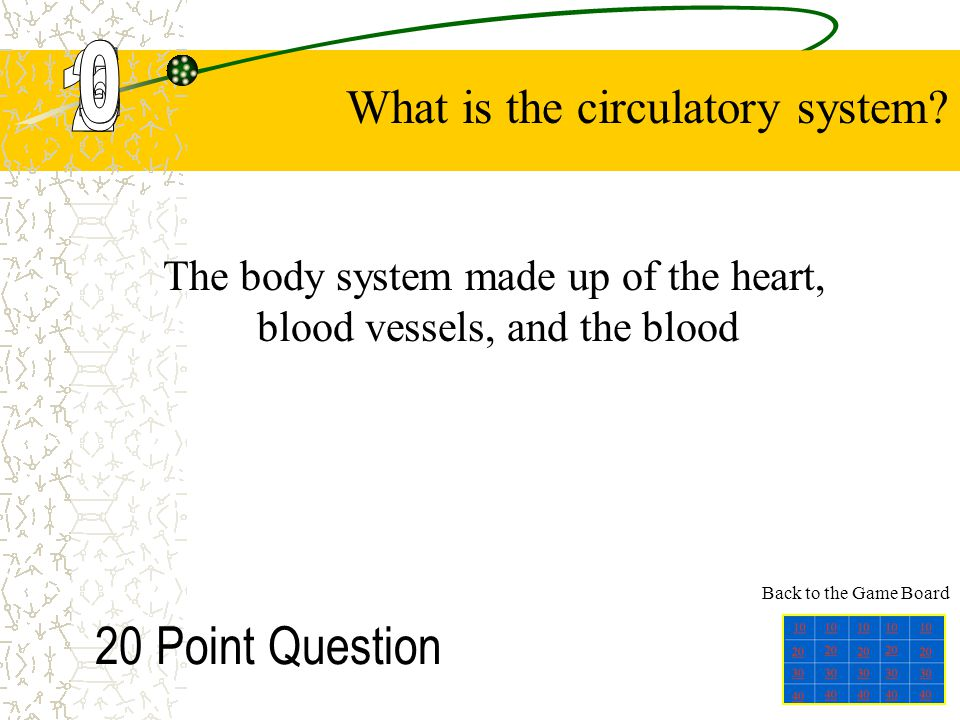 The body system made up of the heart, blood vessels, and the blood