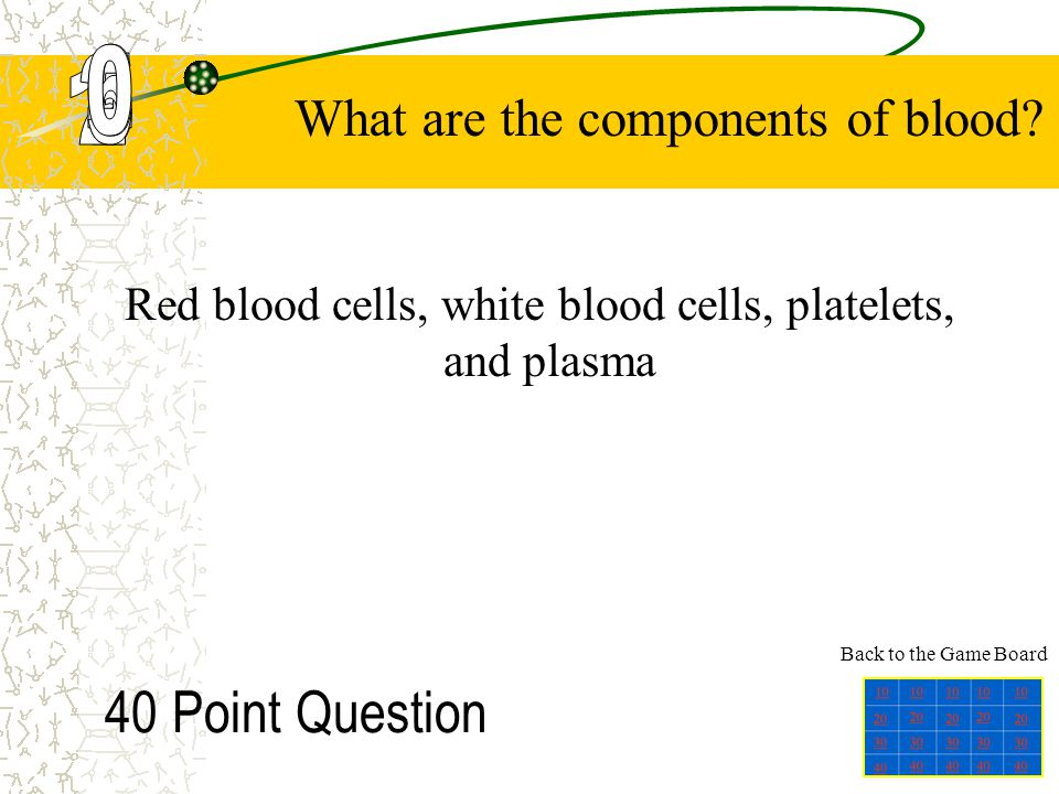 Red blood cells, white blood cells, platelets, and plasma