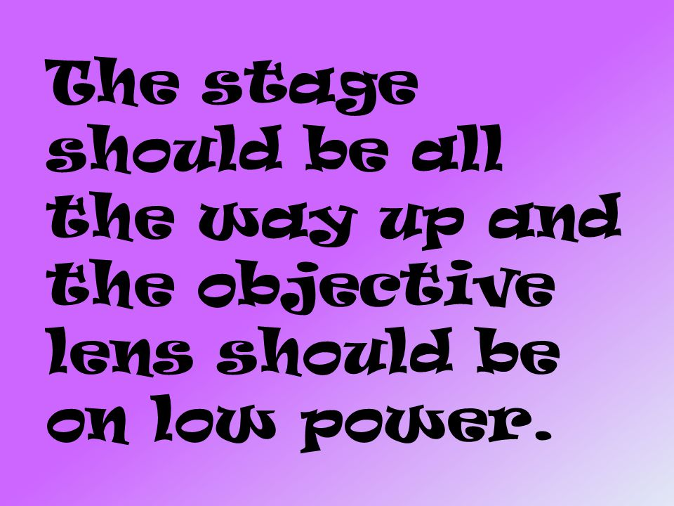 The stage should be all the way up and the objective lens should be on low power.