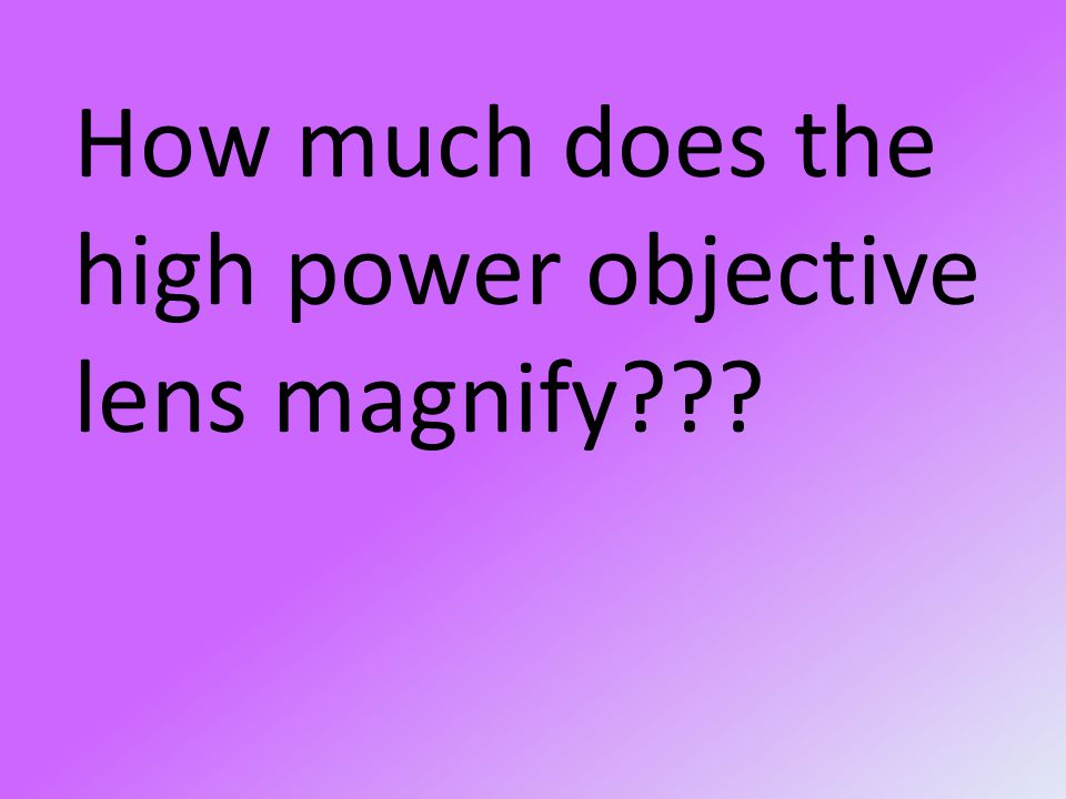 How much does the high power objective lens magnify
