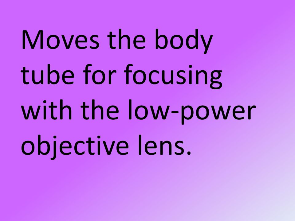 Moves the body tube for focusing with the low-power objective lens.