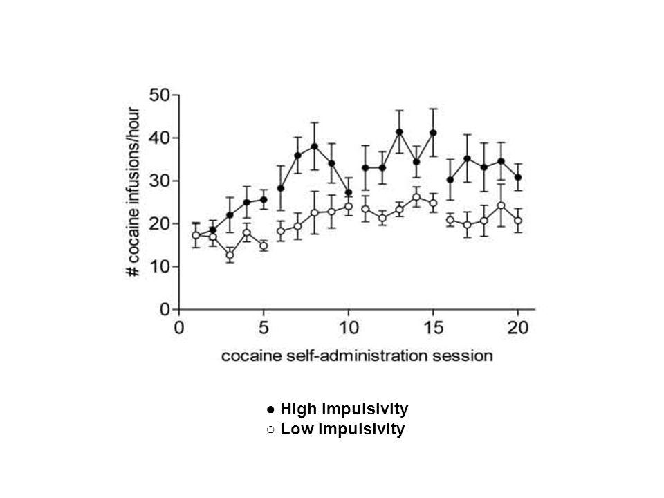 ● High impulsivity ○ Low impulsivity