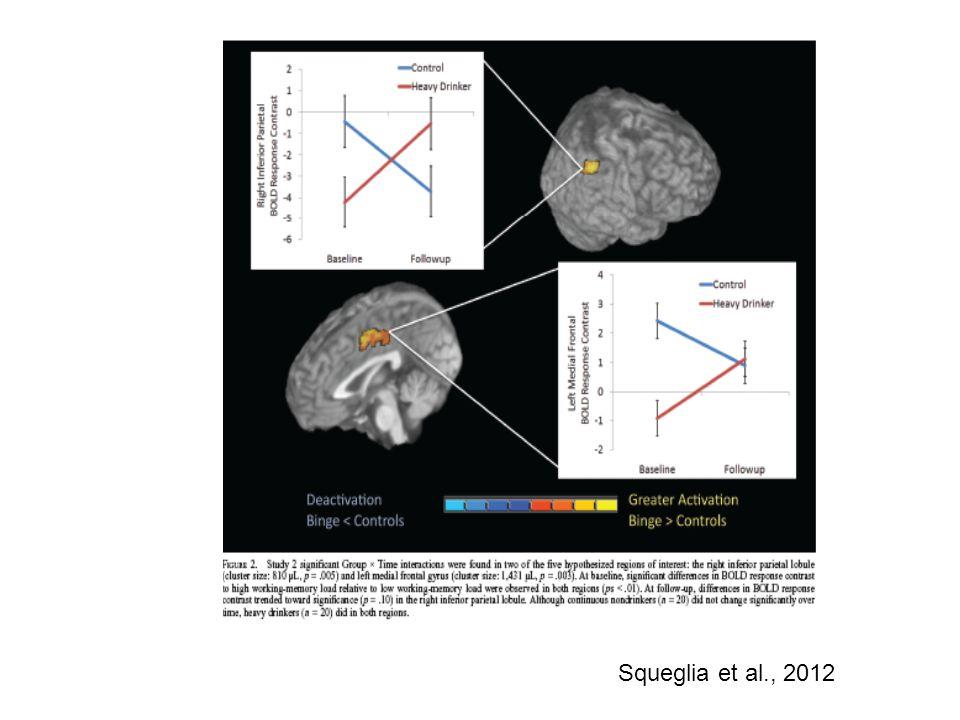 Squeglia et al., 2012