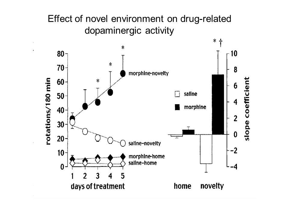 Effect of novel environment on drug-related dopaminergic activity