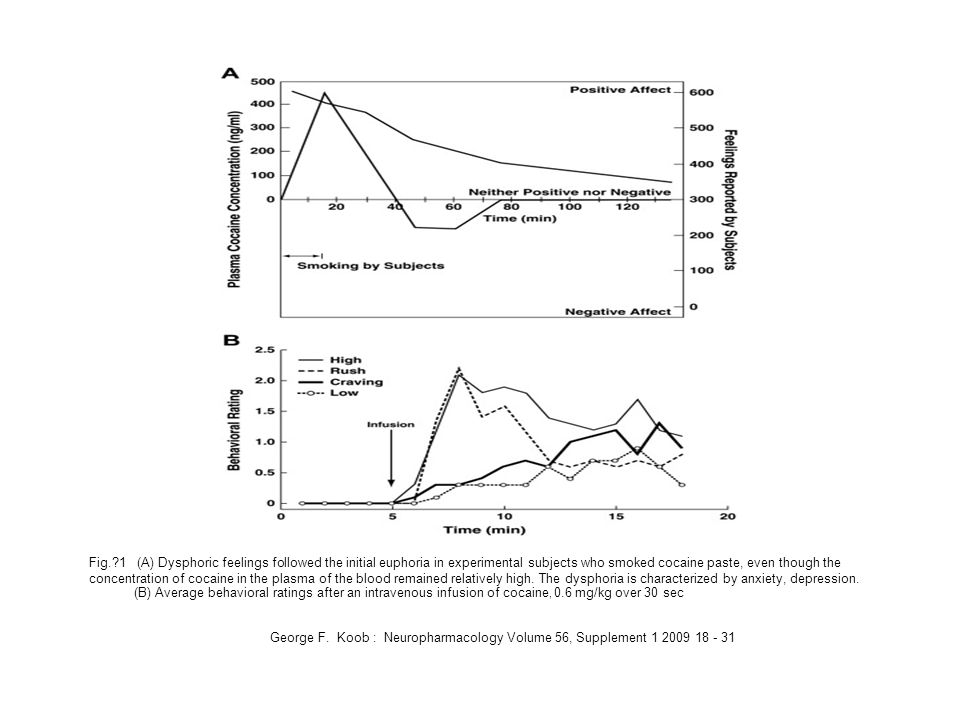 Fig. 1 (A) Dysphoric feelings followed the initial euphoria in experimental subjects who smoked cocaine paste, even though the concentration of cocaine in the plasma of the blood remained relatively high. The dysphoria is characterized by anxiety, depression.