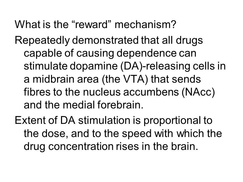 What is the reward mechanism