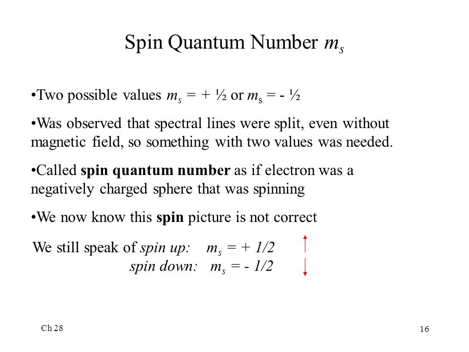 Spin Quantum Number ms Two possible values ms = + ½ or ms = - ½