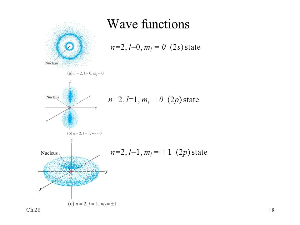 Wave functions n=2, l=0, ml = 0 (2s) state n=2, l=1, ml = 0 (2p) state