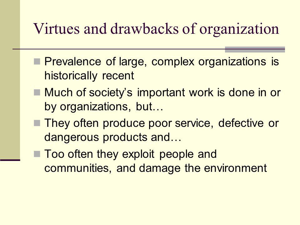 Virtues and drawbacks of organization