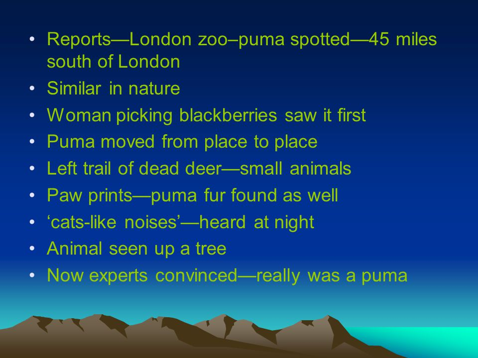 Reports—London zoo–puma spotted—45 miles south of London